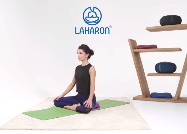 Laharon lotus pro
